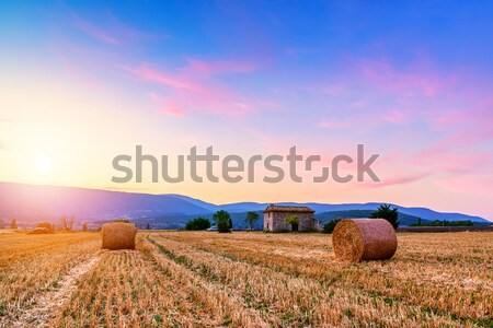 Sunset over farm field with hay bales near Sault Stock photo © Fesus