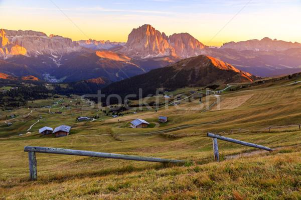 Alpen zomer bergen Italiaans gras natuur Stockfoto © Fesus