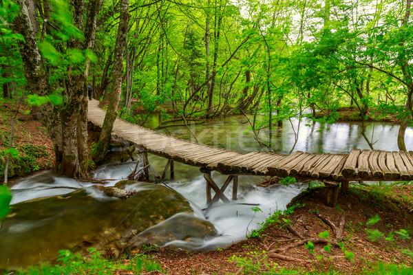 Spring forest creek in Plitvice National park Stock photo © Fesus