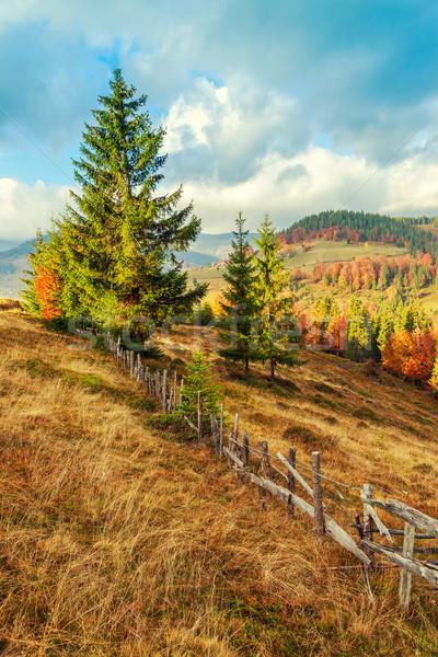 Colorful autumn landscape in the Carpathian mountains Stock photo © Fesus