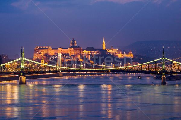 ночь мнение Будапешт здании город Церкви Сток-фото © Fesus