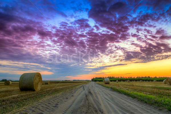 Sunset over rural road and hay bales Stock photo © Fesus