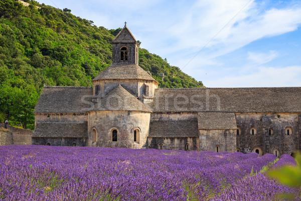 Abbey of Senanque Stock photo © Fesus