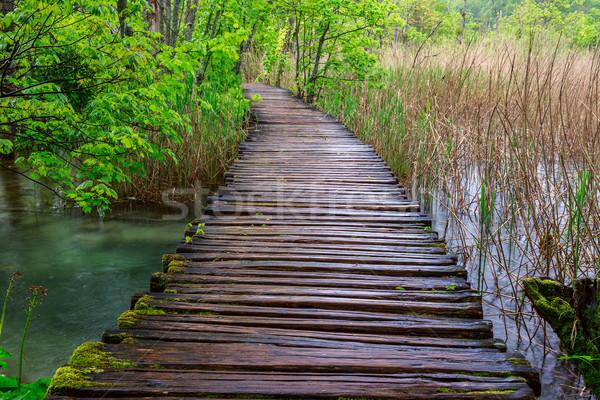 Boardwalk in the park Stock photo © Fesus