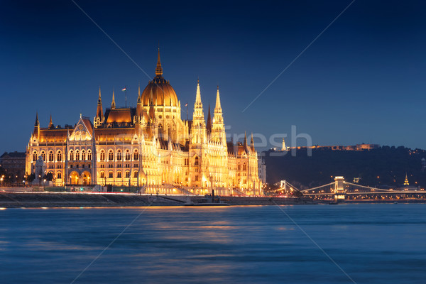 The Hungarian Parliament building at night, Budapest Stock photo © Fesus