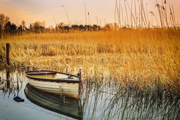 Sunset on the lake Balaton with a boat Stock photo © Fesus