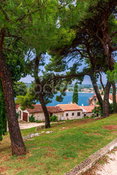 Adriatic sea view at Rovinj Stock photo © Fesus