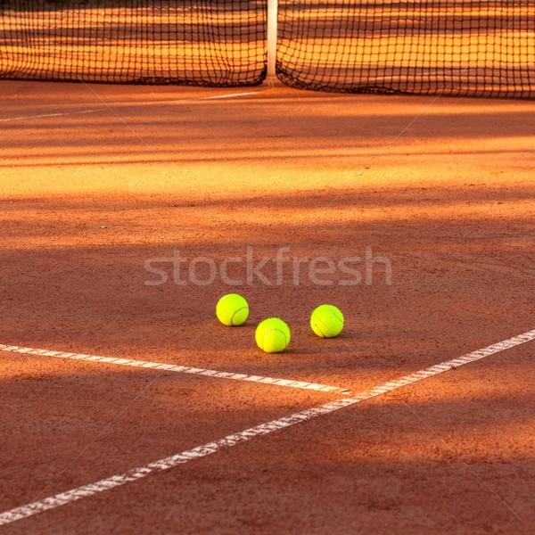 теннисный мяч теннисный корт теннис глина суд спорт Сток-фото © Fesus