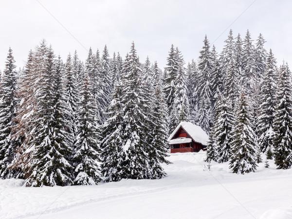 Kış tatil ev Slovenya alpler ağaç Stok fotoğraf © Fesus