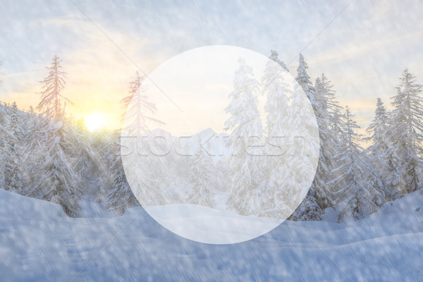 árboles cubierto nieve montanas alpes retro Foto stock © Fesus
