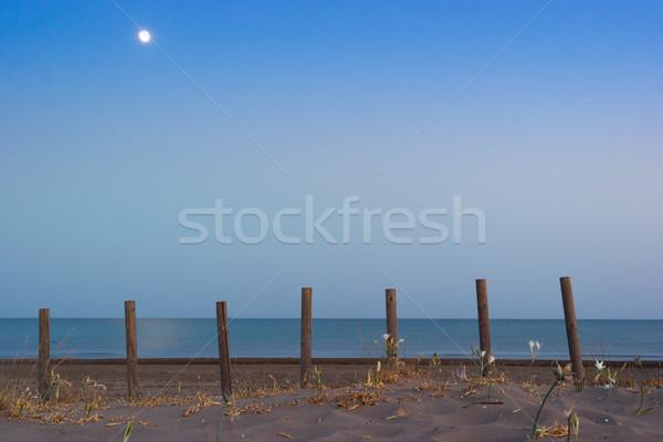 日 ザキントス ビーチ 夏 海岸線 ストックフォト © Fesus