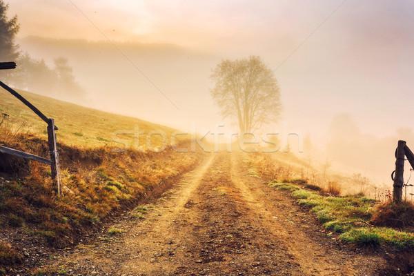 日の出 午前 山 レトロスタイル instagramの ストックフォト © Fesus