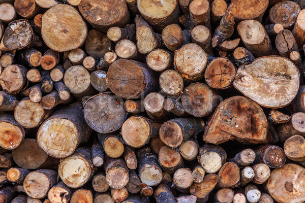 Stack of dried firewood Stock photo © Fesus