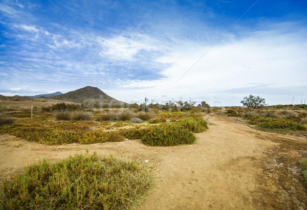 Tipical spanish landscape, Spain, Andalusia, Almeria Stock photo © Fesus
