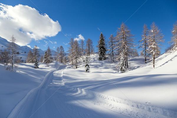 Tél tájkép sí központ hegyek Alpok Stock fotó © Fesus