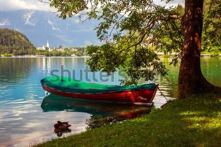 ボート 湖 スロベニア 桟橋 島 ツリー ストックフォト © Fesus