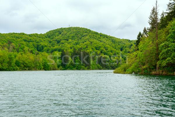 Plitvice Lakes National Park, Croatia Stock photo © Fesus