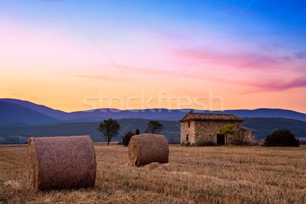 Sunset over farm field Stock photo © Fesus