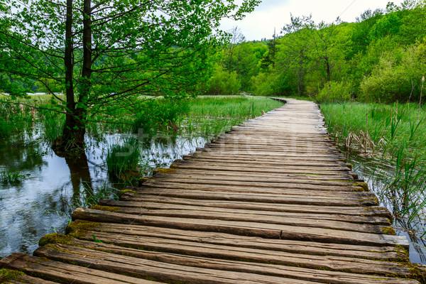 Boardwalk in the park Plitvice lakes Stock photo © Fesus