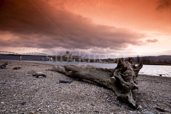 Gün batımı tuna su ağaç manzara arka plan Stok fotoğraf © Fesus