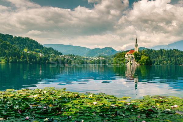 Lago verano isla castillo montanas Eslovenia Foto stock © Fesus
