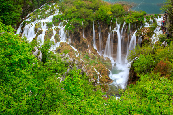 Waterfalls in Plitvice National Park Stock photo © Fesus
