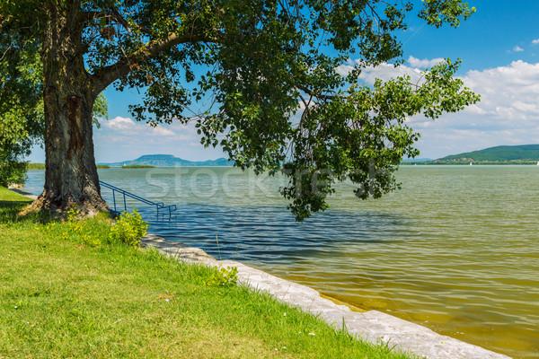 Lac Balaton Hongrie été monde sport Photo stock © Fesus