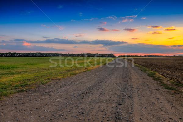 út mezők gyönyörű naplemente fotó hdr Stock fotó © Fesus