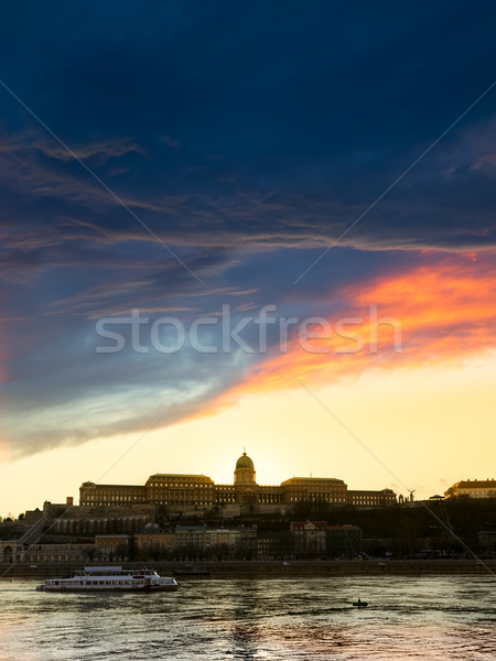 view of buda castle in budapest from danube river Stock photo © Fesus