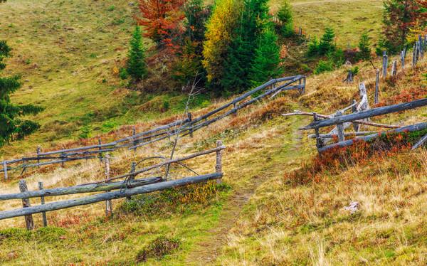 Stock photo: Colorful autumn landscape scene with fence in Transylvania