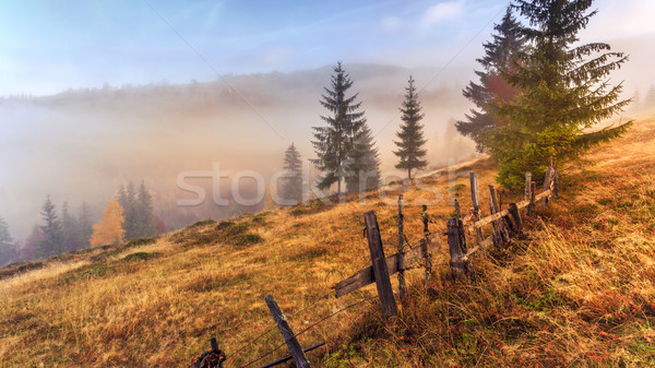 Stock photo: Colorful autumn landscape scene with fence in Transylvania