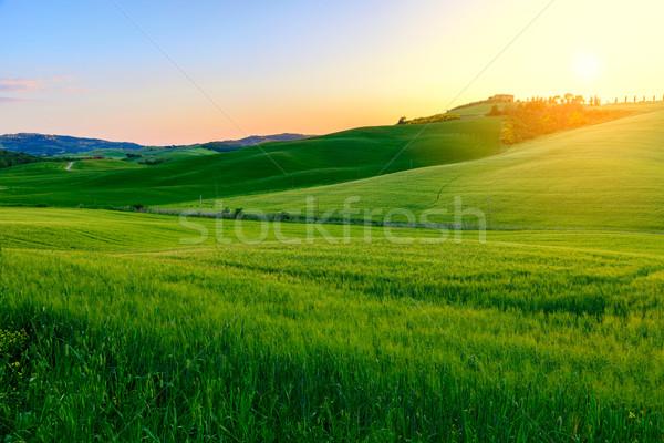 Nyár mezők Toszkána naplemente égbolt tavasz Stock fotó © Fesus