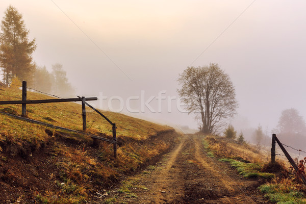 Colorido otono carretera paisaje montanas cielo Foto stock © Fesus