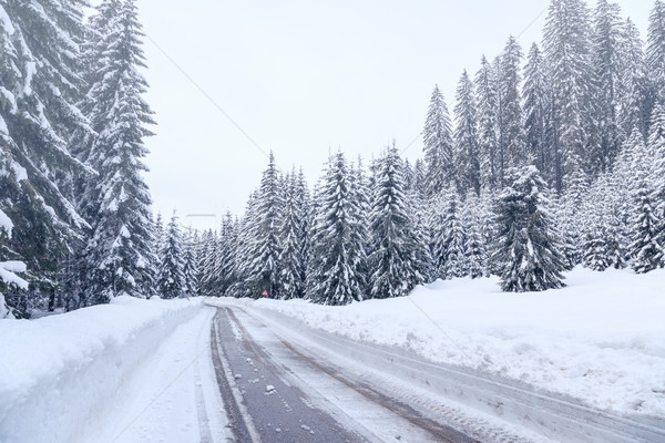 Snowy winter road in Julian Alps Stock photo © Fesus