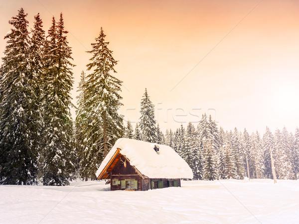 Inverno vacanze casa Slovenia alpi albero Foto d'archivio © Fesus