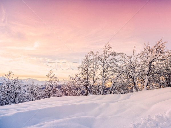 Invierno paisaje esquí centro montanas alpes Foto stock © Fesus