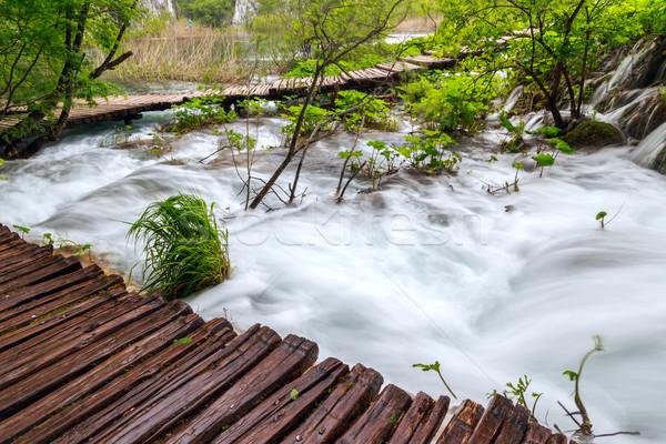 весны лес ручей парка Хорватия пейзаж Сток-фото © Fesus