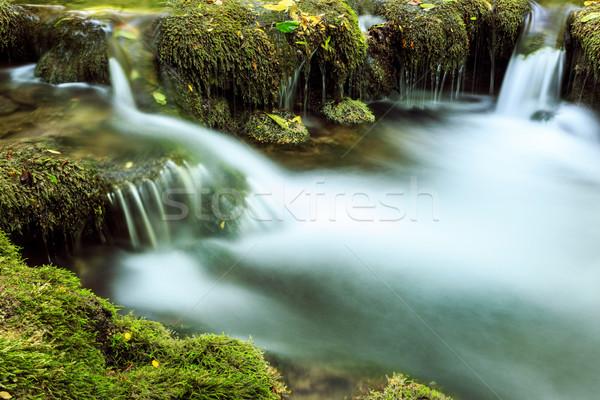 Foto stock: Rio · profundo · montanha · floresta · parque · Romênia