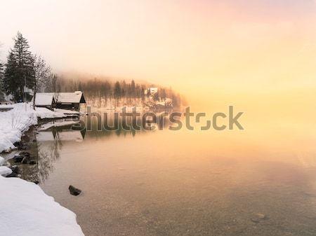Invierno lago parque valle paisaje nieve Foto stock © Fesus
