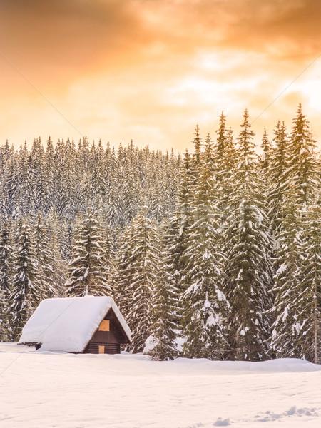 зима праздник дома Словения Альпы дерево Сток-фото © Fesus
