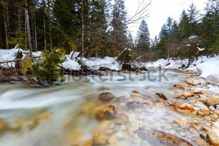 Montana río invierno tiempo alpes Eslovenia Foto stock © Fesus