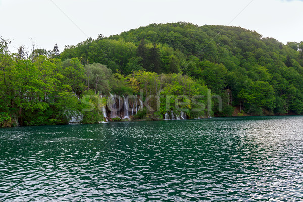 Croatie parc été herbe nature paysage Photo stock © Fesus