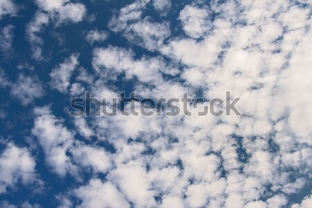 Amazing cumulus cloud formation in deep blue sky Stock photo © Fesus