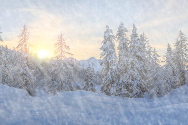 деревья покрытый снега гор Альпы небе Сток-фото © Fesus