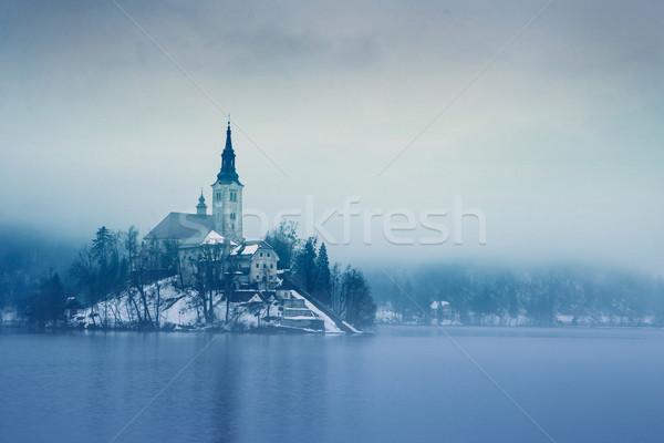 Regenachtig dag meer winter Slovenië Europa Stockfoto © Fesus