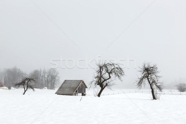 Simple hiver paysage Slovénie ciel Photo stock © Fesus