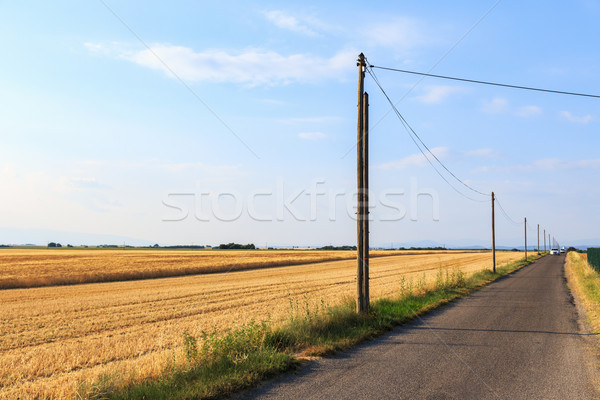 Country Road Stock photo © Fesus
