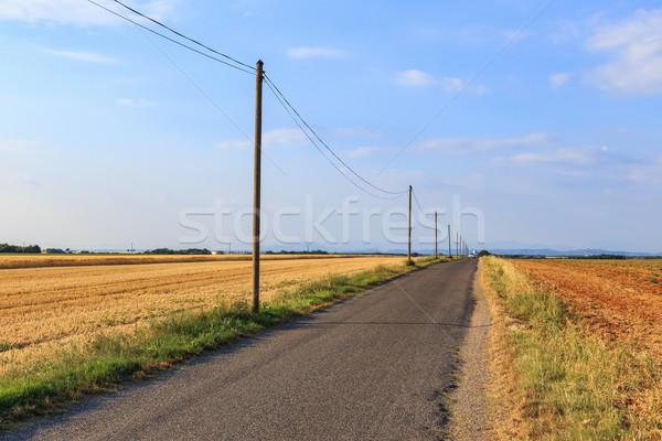 Country Road Stock photo © Fesus
