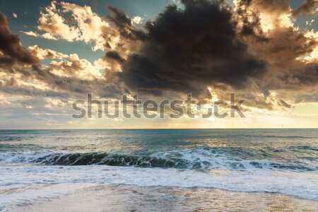 Mar pôr do sol praia naturalismo parque céu Foto stock © Fesus