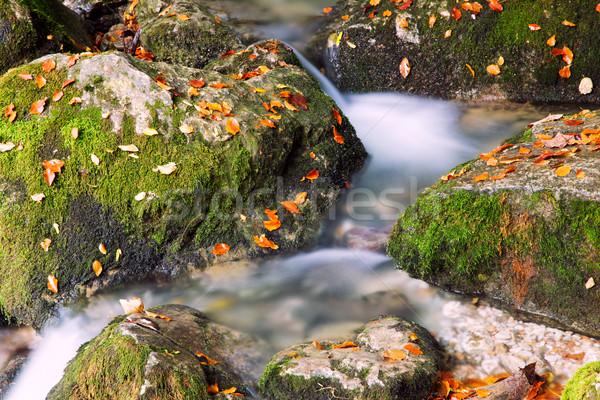 Rzeki kaskada lasu góry wiosną górskich Zdjęcia stock © Fesus
